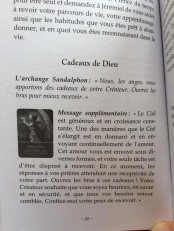 DOREEN VIRTUE CADEAU DE DIEU explication